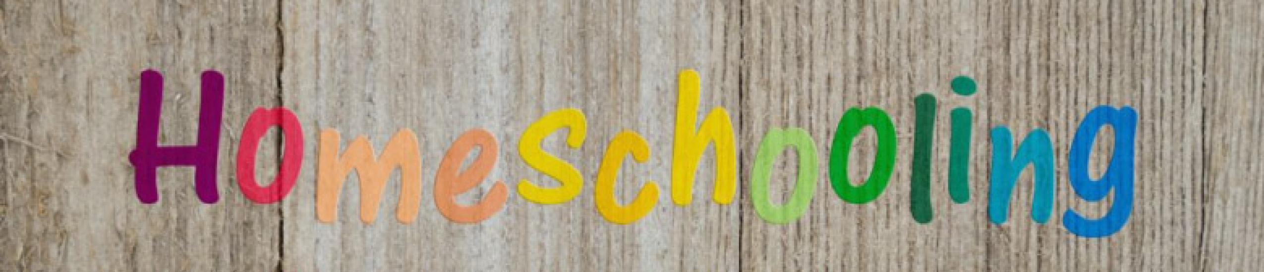 L'istruzione parentale - Home schooling