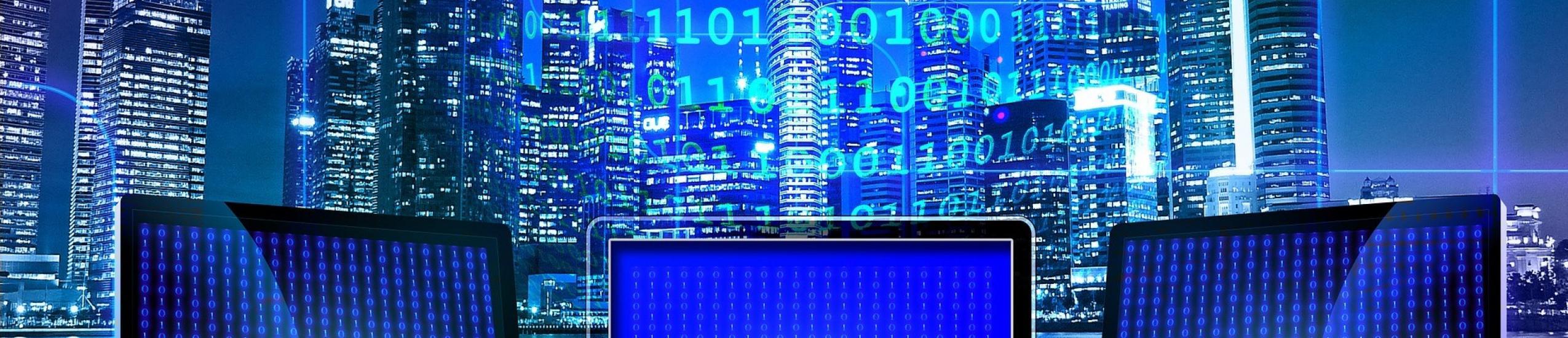 L'osservatorio delle competenze digitali: le nuove professioni tra skills digital rate ed evoluzione futura