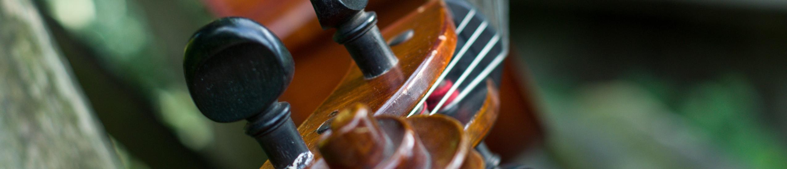 immagine violoncello