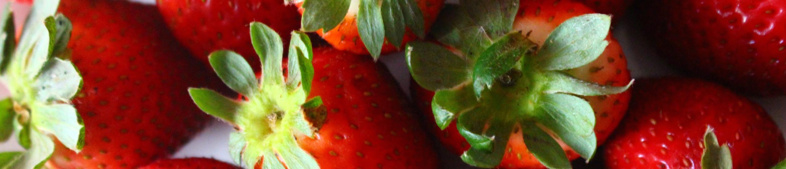 Ambito di interesse agricolo, alimentare