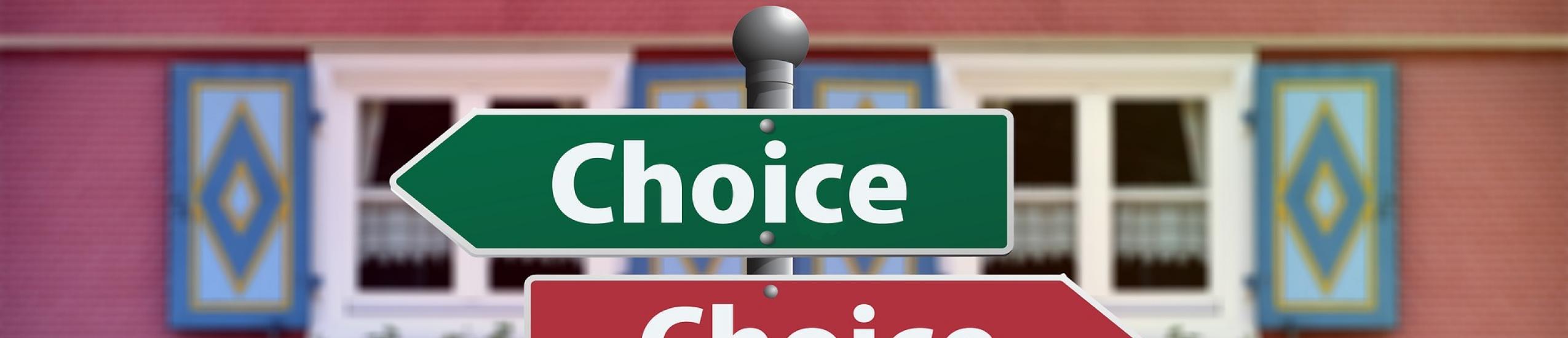 immagine scelta scolastica