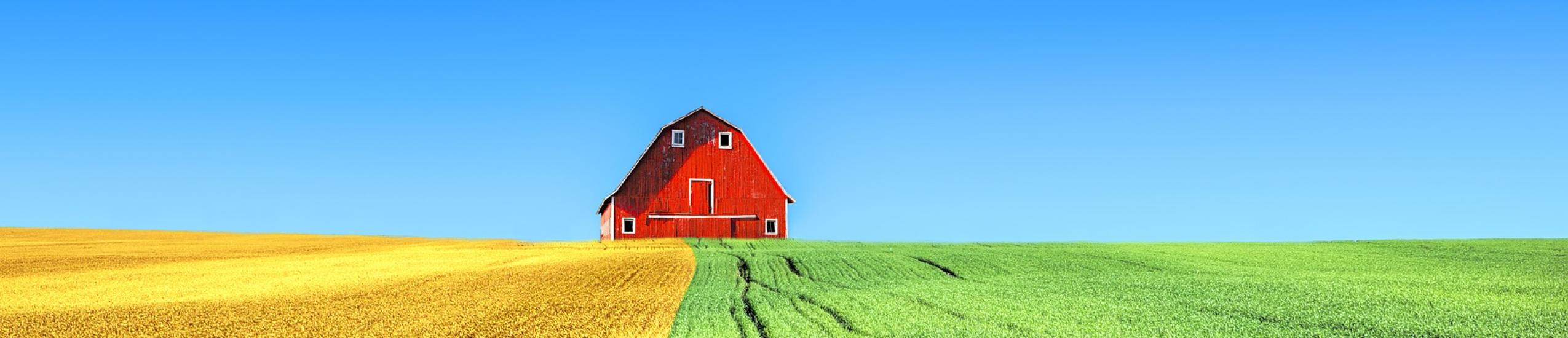 Istruzione e formazione professionale » Operatore agricolo