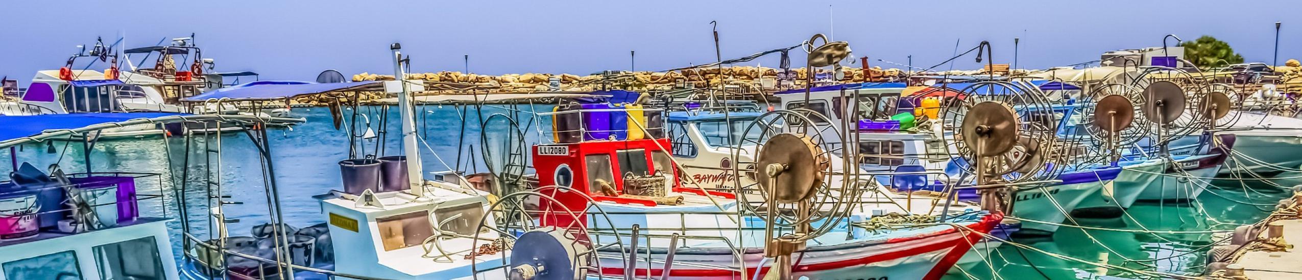 Istituti Professionali » IP - Pesca commerciale e produzioni ittiche