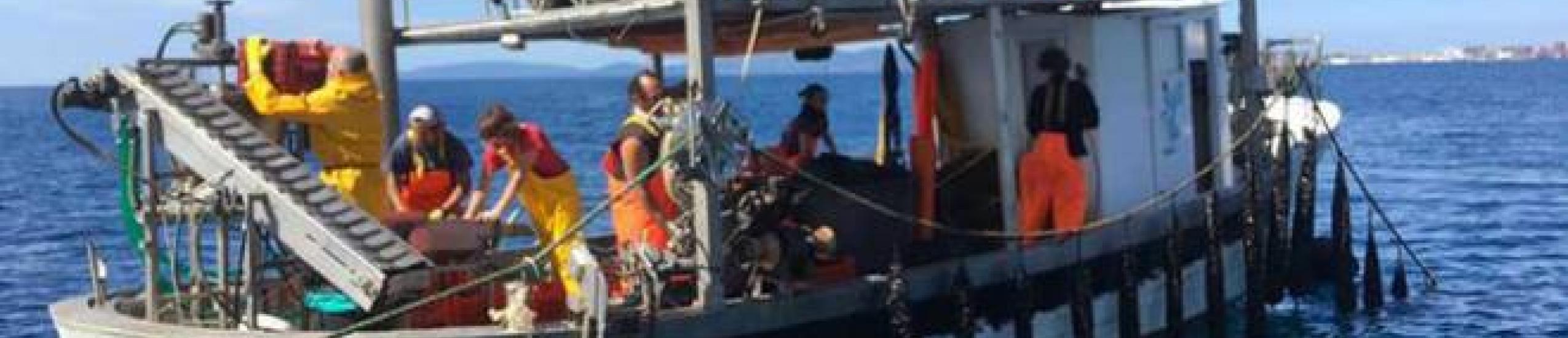 Operatore del mare e delle acque interne