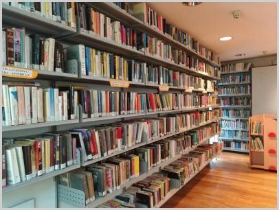 Immagine interno biblioteca3
