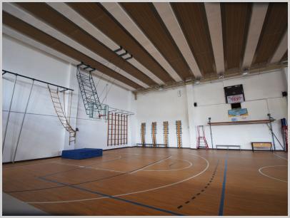 Immagine relativa a Liceo L. Lanfranconi - palestra 2