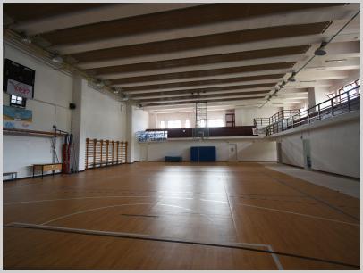 Immagine relativa a Liceo L. Lanfranconi - palestra