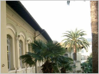 Immagine relativa a Liceo Marconi/Delpino