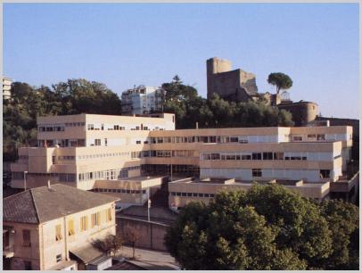 Immagine relativa a Liceo E. Luzzati