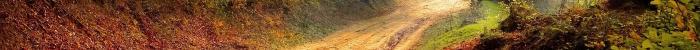 Istituti Professionali » IP - Agricoltura, sviluppo rurale, valorizzazione dei prodotti del territorio e gestione delle risorse forestali e montane